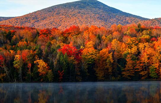 Enjoy the colors of Fall with an exciting escape...both near and far.